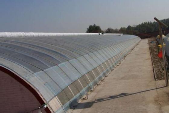 北京顺义区日光温室大棚建设造价钢管蔬菜大棚多少钱一亩