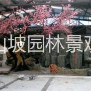 假山假树造景图片
