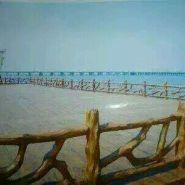 湖北仿木栏杆图片