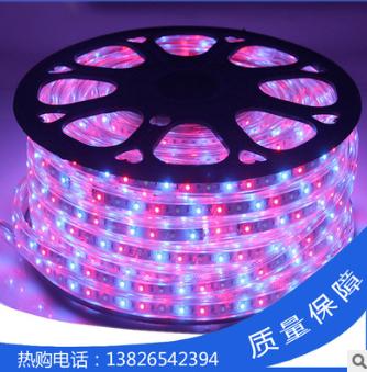 厂家直销 高亮7彩跑马5灯LED软灯条