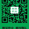 东北三省土特产是什么有什么好吃的图片