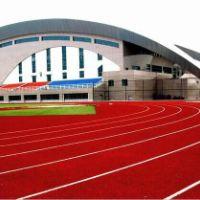 PU聚氨酯跑道系列体育地坪类
