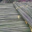 哈尔滨菜架竹供应商图片