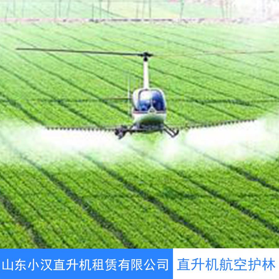 天门直升机航拍航测 物探巡线