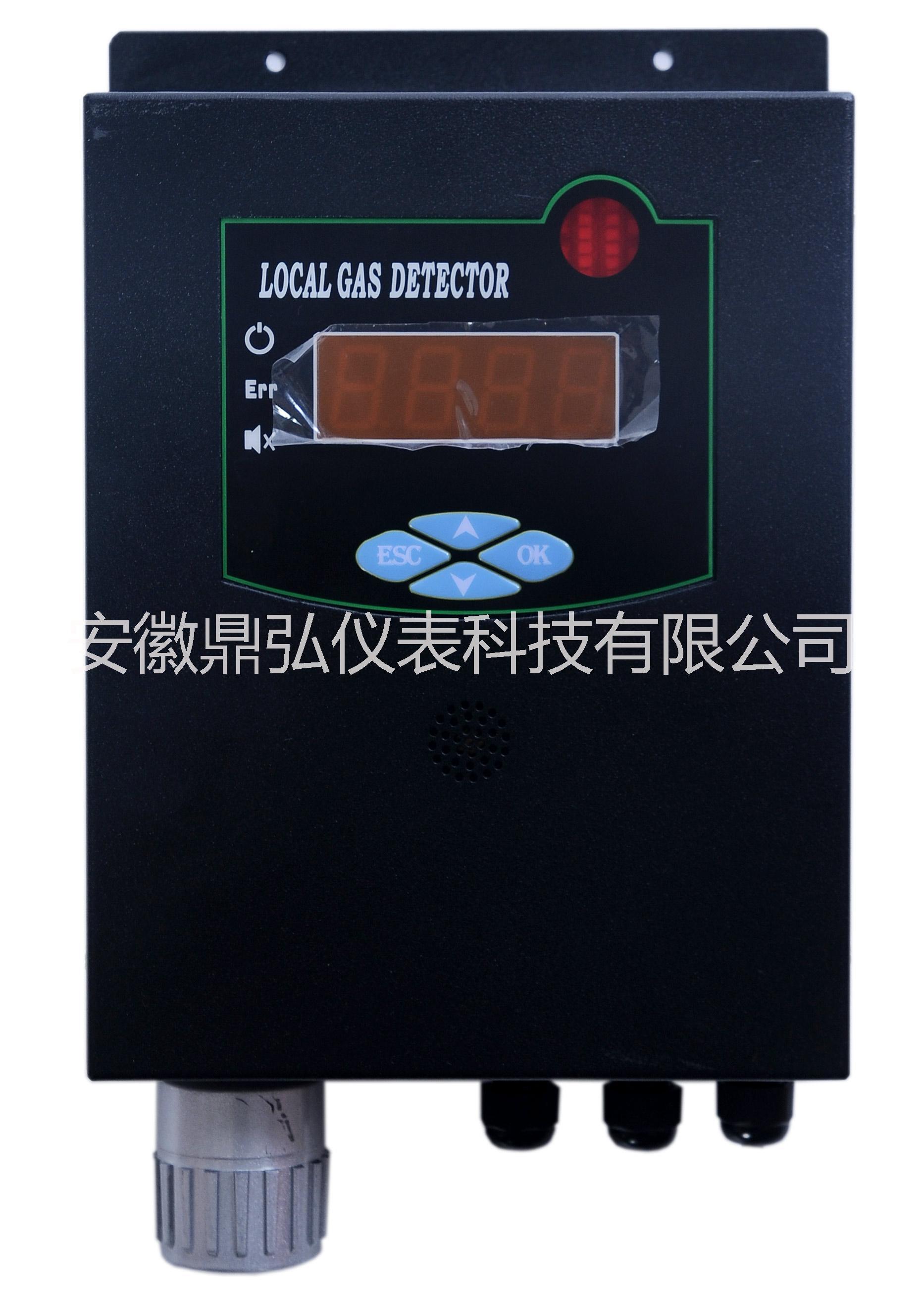 可燃气体检测仪图片/可燃气体检测仪样板图 (2)