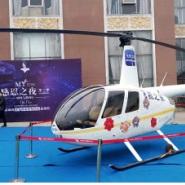 南阳直升机租赁 价格报价图片