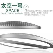 太阳能路灯(太空一号)图片