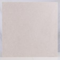 罗娜尔 WP601白普 抛光砖