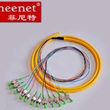 Pheenet菲尼特FCAPC12芯1.5米单模束状尾纤光缆跳线电信级尾纤跳线图片