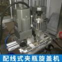 配线式夹瓶旋盖机生产图片