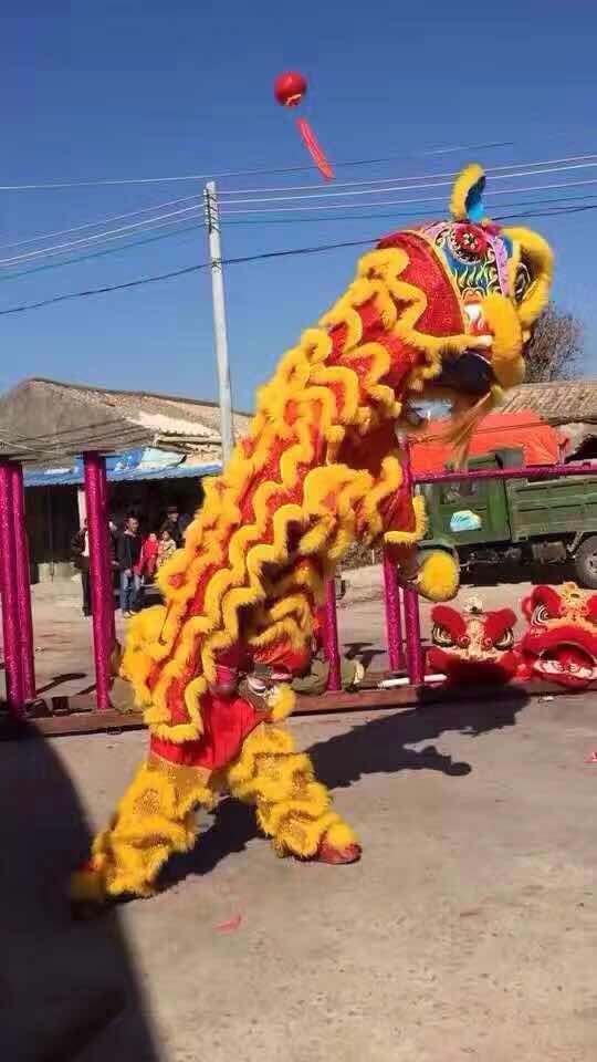 梅州舞狮队
