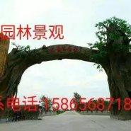阜阳假树大门图片