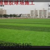 天津人造草坪材料厂家-施工|铺设公司-足球场草皮安装、幼儿园彩色塑胶图案跑道
