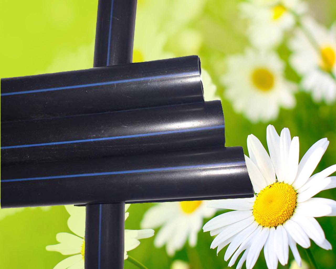花卉观赏花种植滴灌管材滴灌设备花卉观赏花种植滴灌管材滴灌设备