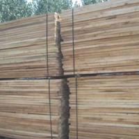 榆木烘干板材供应 河南榆木烘干板材图片 榆木烘干板材销售 河南榆木烘干板材厂家