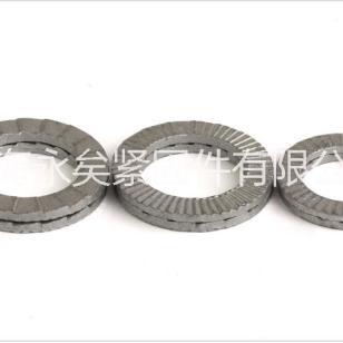 DIN25201双叠自锁垫圈 (图片