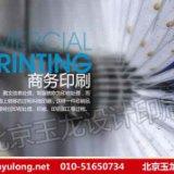 画册,样本,宣传册,北京设计印刷,手提袋印刷厂