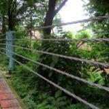 衡水安平柔性缆索护栏制造厂家 铄航钢丝绳护栏制造商 铄航柔性缆索护栏价格