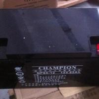 冠军蓄电池 冠军蓄电池代理商NP65-12报价