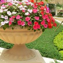 各种仿古雕刻花盆 各种形状规格花盆定制 南宁石雕花盆