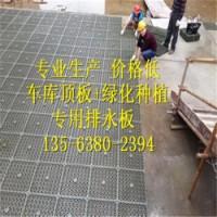 工程&工地常用高密度聚乙烯蓄排水