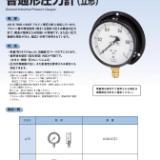 长野计器NKS压力表AE20-183系列AE20-183 -0.1-1.6MPa