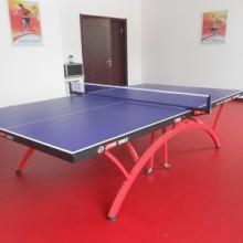 网球地板乒乓球塑胶地板批发