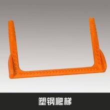 增强热固性FRP复合材料塑钢爬梯高强度耐腐蚀井道爬梯厂家定制批发批发