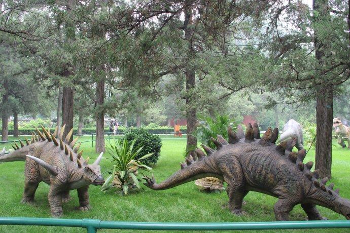 人穿恐龙 杭州人穿恐龙厂家 哪里有恐龙表演 变形金刚厂家 人穿恐龙生产厂家