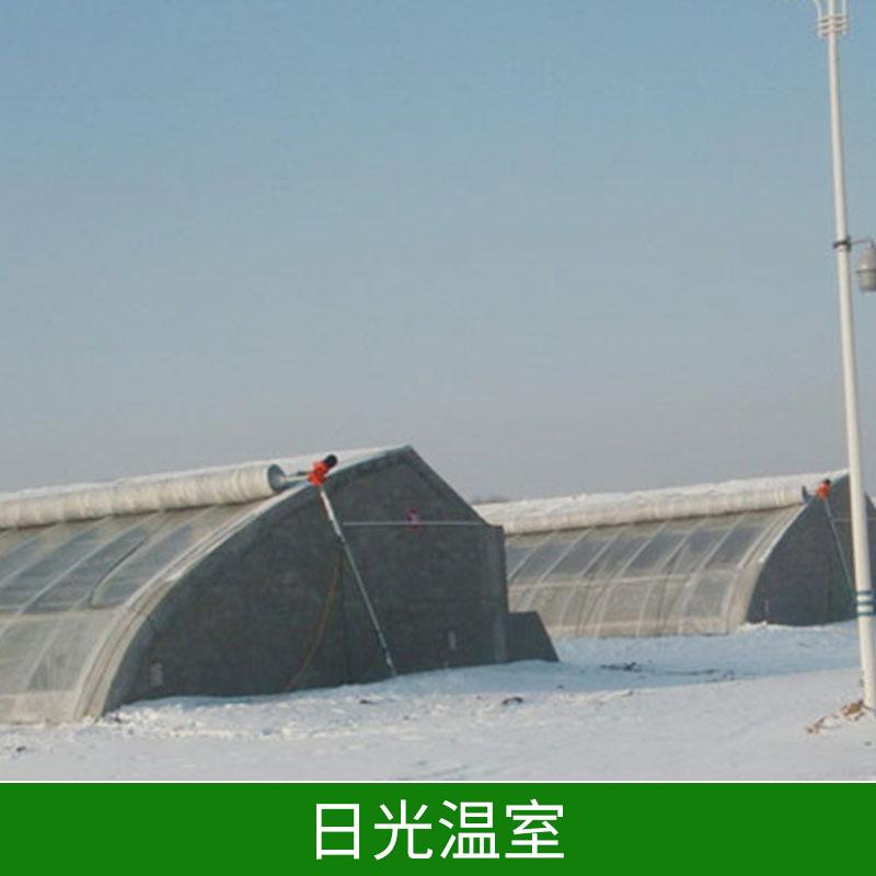 日光温室温室钢管大棚保温好投资低节约能源价格实惠日光温室厂家直销