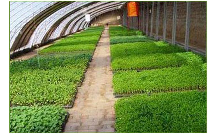 种植温室设计施工  种植温室建造  种植温室配件