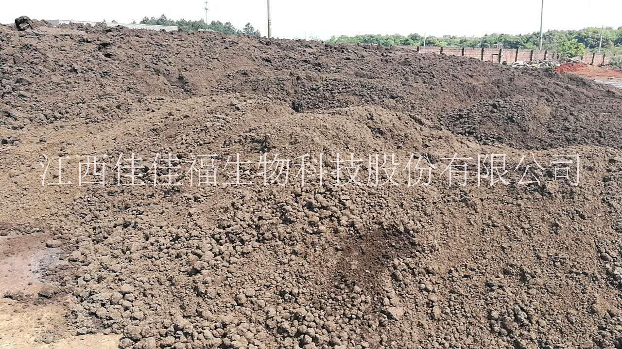 木薯渣有机肥原料
