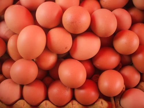红皮鲜鸡蛋批发商@青海鸡蛋配送中心@青海红皮鸡蛋配送中心图片大全图片