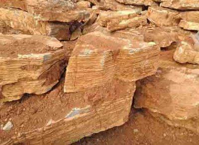 千层石假山石黄千层石湖边石千层石一吨