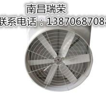 风机选哪家好?选瑞荣玻璃钢负压风机,抗腐蚀性,使用年限长。