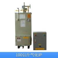 100公斤气化炉