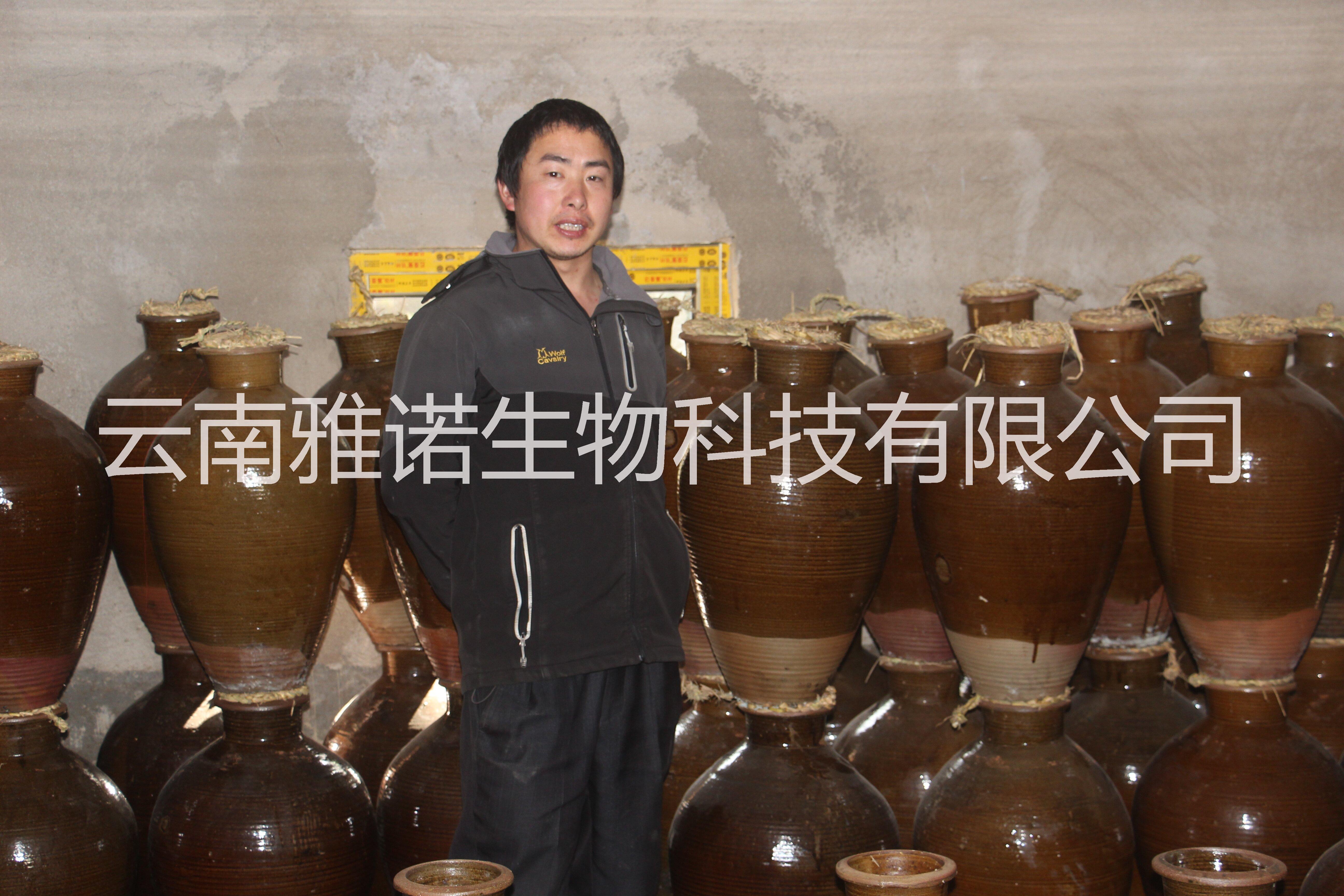 纯粮食包谷酒小锅酒铜锅酒小分子酒传统工艺地缸发酵铜锅蒸馏