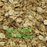 白芷种子价格,白芷种植时间,白芷的经济效益,油用牡丹种苗供应, 白芷种子白芷的产量 安徽白芷种子批发商