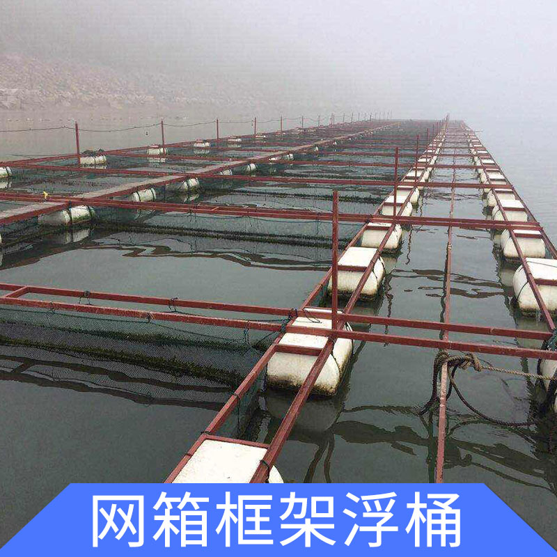 厂家专业生产 浮筒码头  网箱框架浮桶 质量放心保证 价格优异 欢迎订购