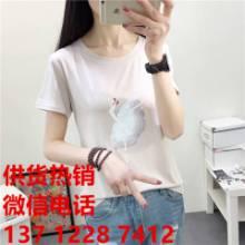 2017夏季新品女T恤玫瑰刺绣纯女式T恤韩国学生百搭纯棉上衣批发