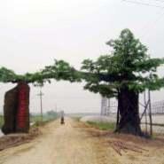 扬州假树大门做法 扬州室内外假树大门做法 仿真假树大门定做