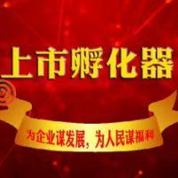 北京推荐企业挂牌新四版服务