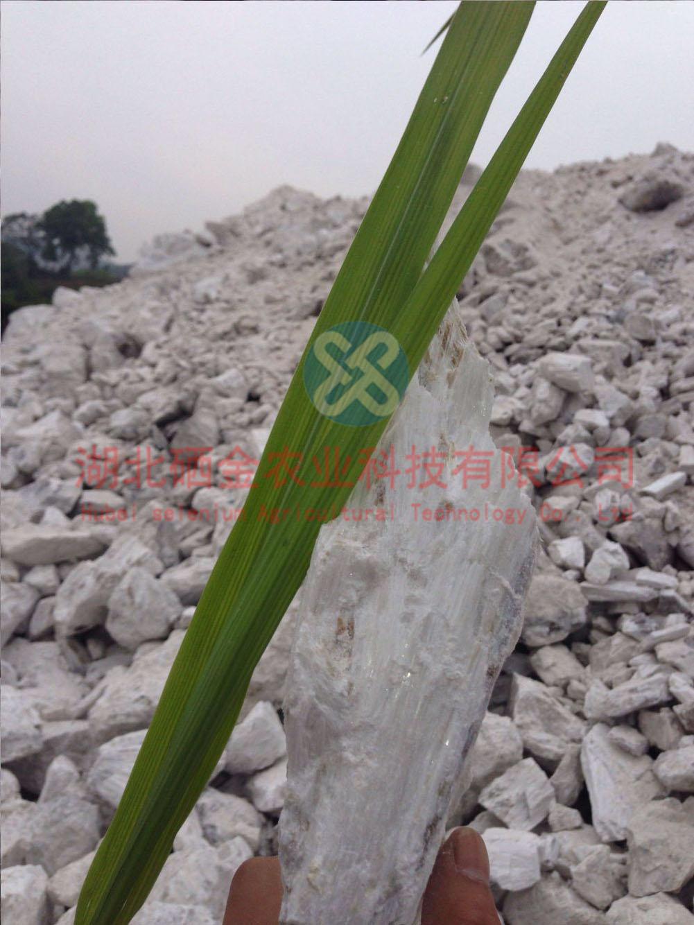 供应硅钙肥2000目 硅钙肥五氧化三磷/P205  0.01%