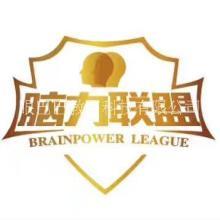 中国脑力联盟项目介绍