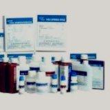 牛血清素/血清胺(STELISA试剂盒注意事项 上海ELISA试剂盒