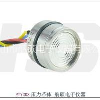 广东航硕生产扩散硅充油芯体