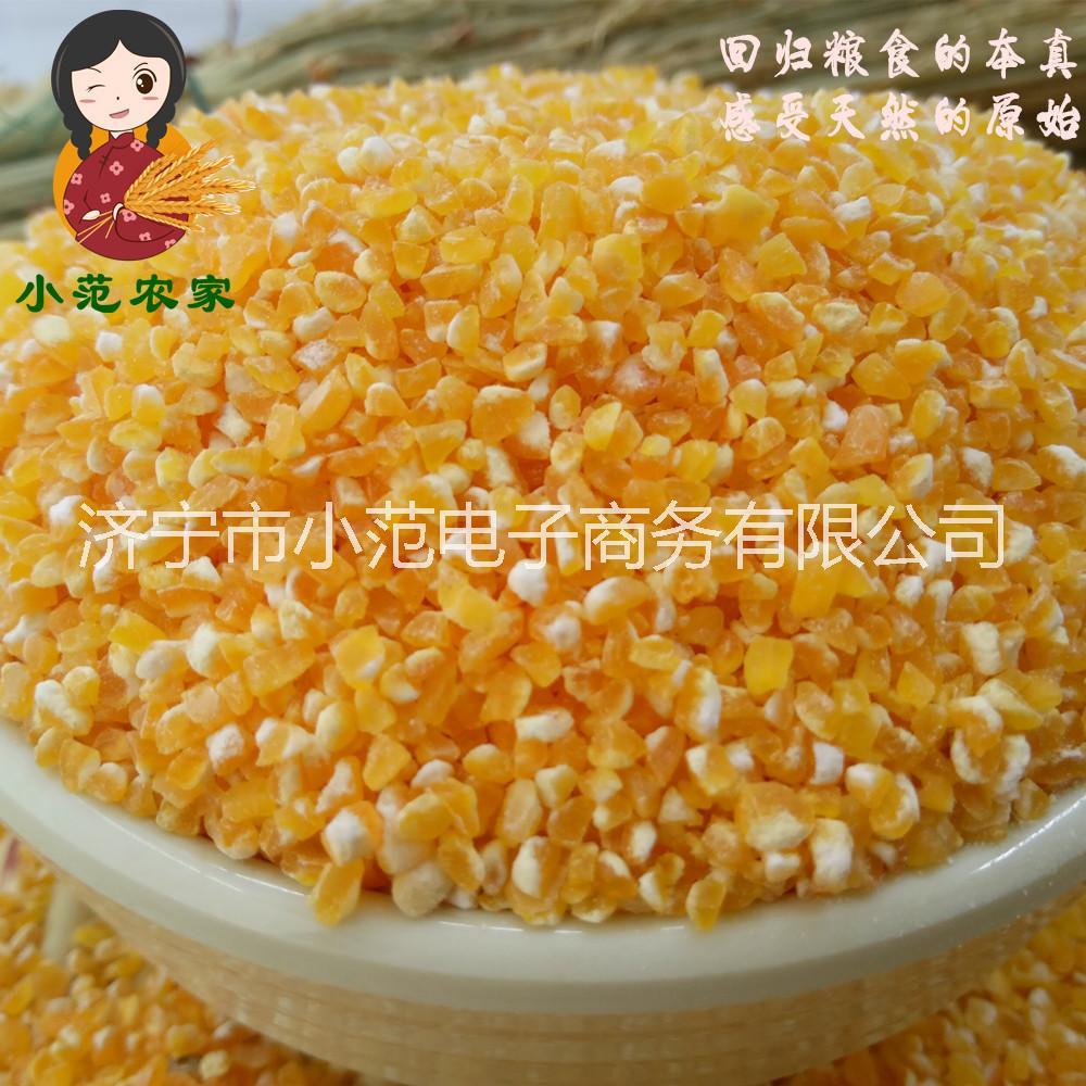 玉米碴 山东农家自产 黄玉米茬 苞米糁渣 棒子碎 小碴子新货250g