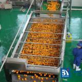 橙加工生产线,果汁生产线,水果深加工