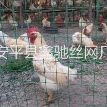 铁丝网养鸡场围栏网@养鸡场围栏网@养鸡场围栏网厂家批发