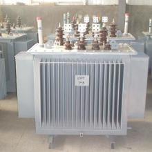 瑞光10KV级S11系列油浸式变压器直销批发